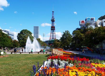 【札幌市内】限られた時間を大切に巡るコース!