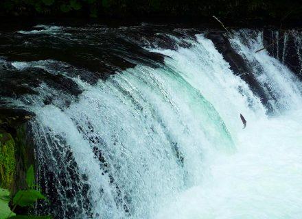 さくらの滝(清里町)