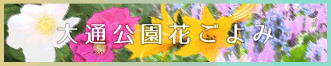 札幌大通花ごよみ